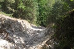 Descente-Puiselet-23km-2