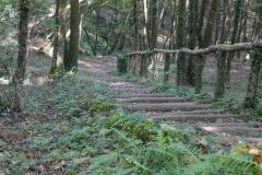 haut-escaliers-11-23km