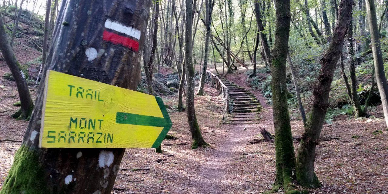 Matinées découverte du parcours du Trail du mont Sarrazin